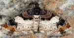 Catarhoe cuculata 38 1